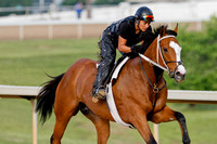 Morning Workouts (Arkansas Derby) 1