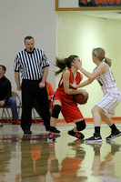 Glen Rose vs. Perryville Girls 3A District Tournament 2-20-2015 (©Justin Manning) JWM_006
