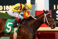 Oaklawn (Honeybee Stakes) 3-12-16